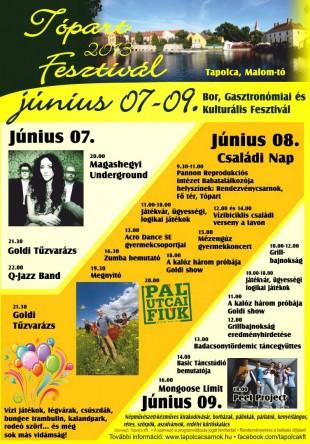 topart_2013